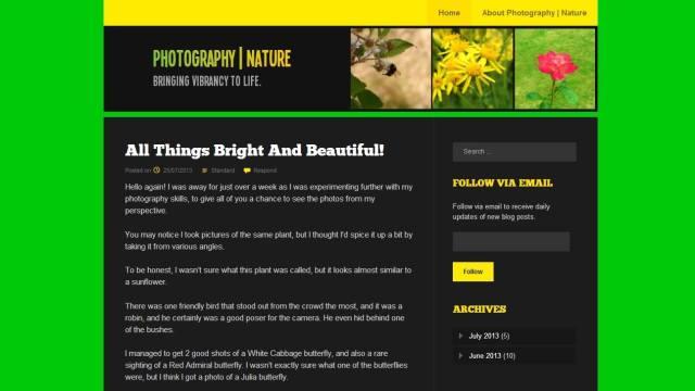Fanwood Light - 3 & 5 - Photography - Nature