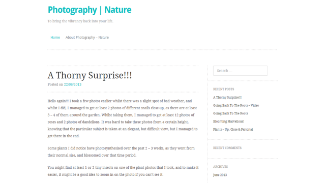 New look blog design - Truly Minimal