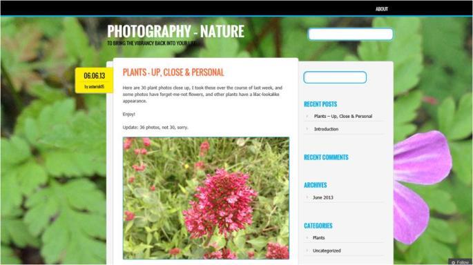 Newsworthy - Photography - Nature