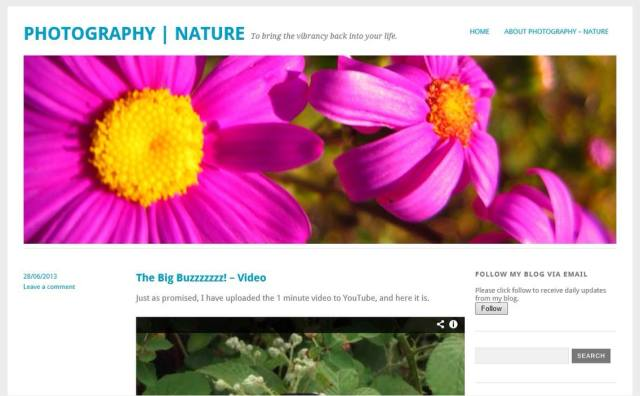 YOKO - Photography - Nature