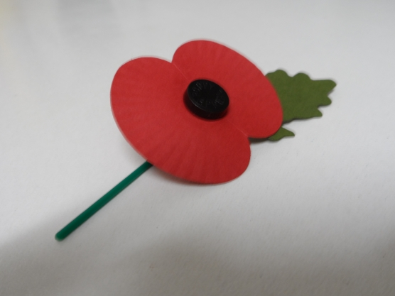 Remebering those that fought in the first World War.
