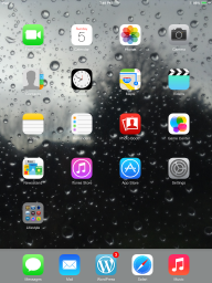 "A Preview of the Wallpaper ""Raindrops on the Glass"" on the 1st Generation iPad mini - Portrait Mode"
