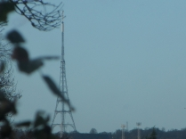 The Crystal Palace Tower in Broad Daylight - Taken Yesterday