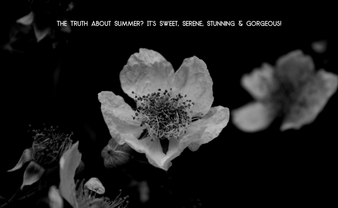 The Truth About Summer. It's Sweet, Serene, Stunning & Gorgeous