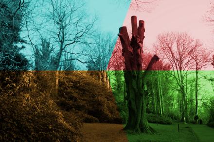 Photographic Experiment #2