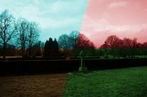 Photographic Experiment #29